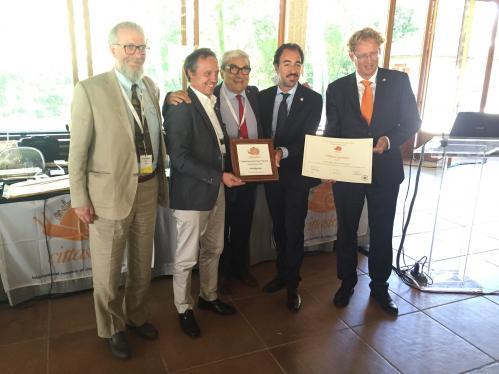 Infrastructure Award - Abbiategrasso (Italy)